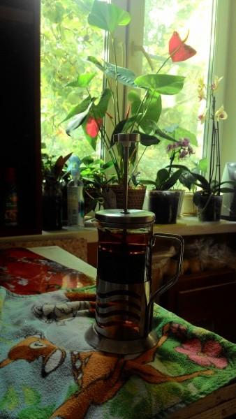 Травяной чай на живой воде